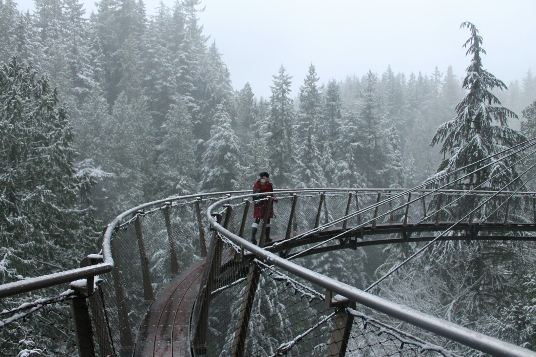 capilano-suspension-park-clifwalk