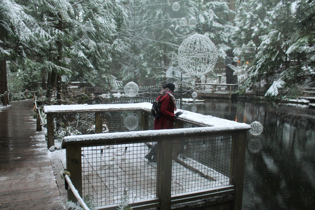 capilano_suspension_bridge_park-2